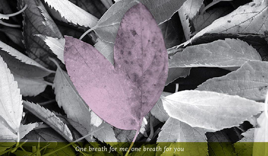Mindful Self-Compassion 8 Week Training: Nanaimo, B.C.