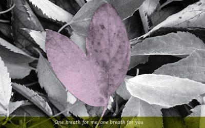 Self-Compassion Break for Shame